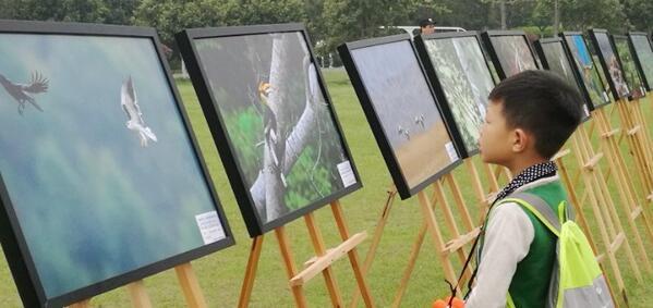 """长沙市第37届""""爱鸟周""""活动启动 助力长沙创建国际湿地城"""